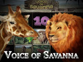 Voice of Savanna